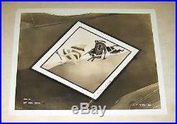 5 WWII OFFICIAL UNITED STATES Air Force Military Airplane NOSE ART 8x10 PHOTOS